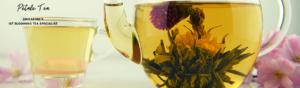 Petale Tea, Singapore's 1st Blooming Tea Specialist